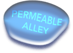 permeable-alley